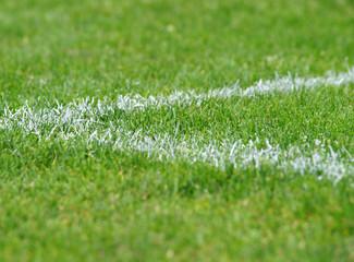 Fußball Ecke - Soccer Grass