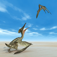 Flugsaurier Pterodactylus
