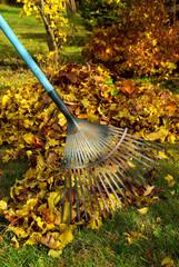 Laub harken - leaves rake 03