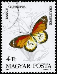 HUNGARY - CIRCA 1984 Danaus