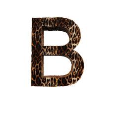 Jaguar letter A BC
