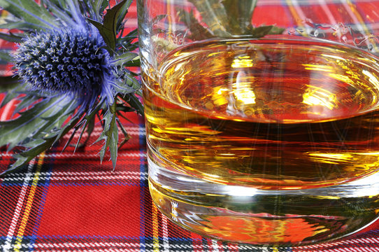 Scotch Whiskey and Thistle