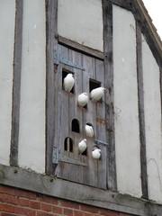 Maison à pigeons