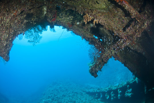 View to the outside from within the shipwreck of the Dunraven.