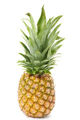 Pineapple is isolated on a white background