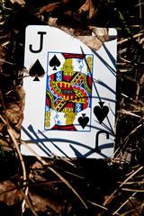 justice for jack of spades