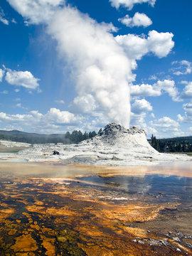 Castle Geyser Yellowstone