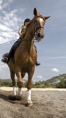 caballo trotando