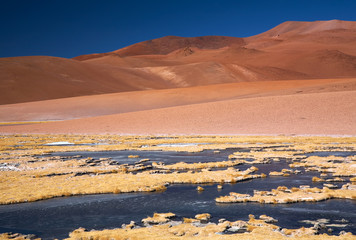 frozen lagoon in Atacama desert, Chile