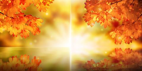 Abstract fairy autumn maple branch