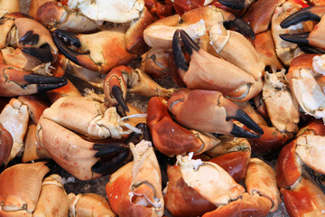Seafood in Bergen - crab background