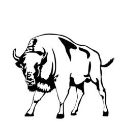 black and white bison vector illustration