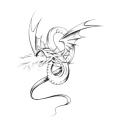 Fototapete - Sketch of tattoo art, dragon