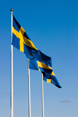 The Swedish flags