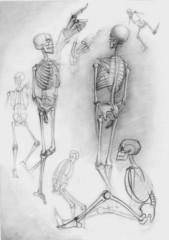 Sketch of skeletons