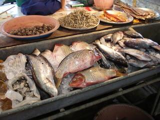 Fisch-Basar