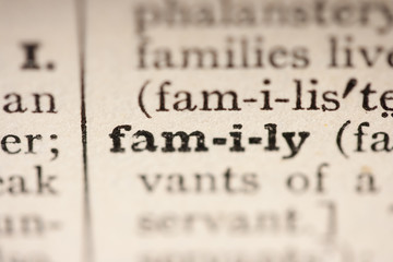 Word family