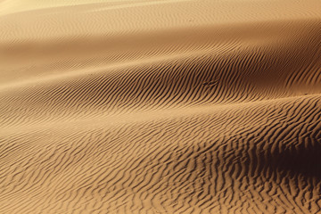 Sandy waves are poured in solar beams