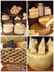 variétés de fromages sur le marché
