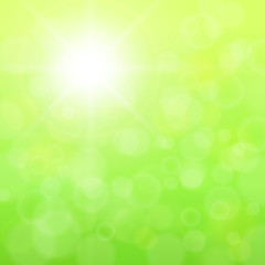 Fototapeta Abstract background green and sunny.