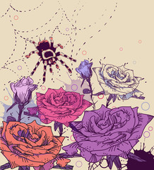fantasy vector  background with a spider and colored roses