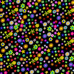 Colorful Flowers on a Black Background