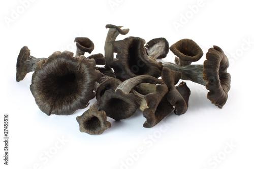 Trompettes de la mort photo libre de droits sur la banque d 39 images image 27455516 - Cuisiner des trompettes de la mort ...