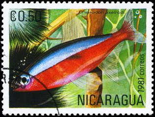 NICARAGUA - CIRCA 1981 Neon