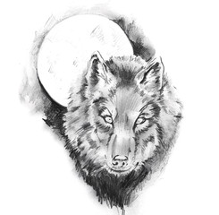 Sketch of tattoo art, wolf