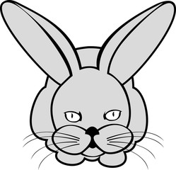 Vector image of  hare or rabbit on white background