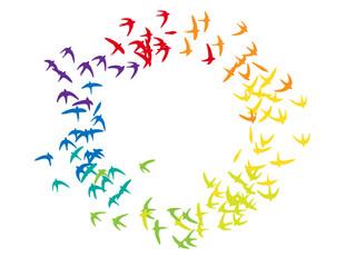 regenbogen vögel kreisend