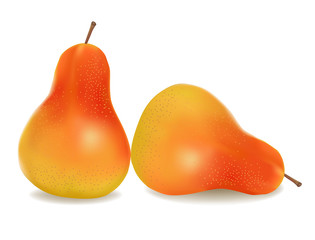 Two ripe yellow pears. Vector.