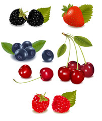 Photo-realistic vector. Group of berries.