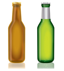 Two bottles of beer on a isolated   background,vector
