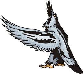 The big eagle with white plumage.