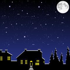 Village in the moonlight