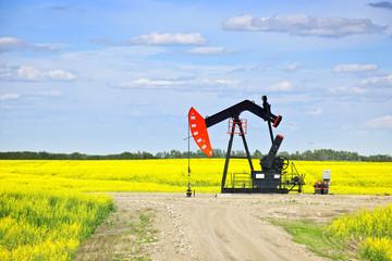 Nodding oil pump in prairies