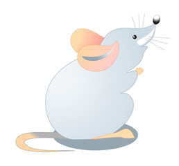 small gray mouse