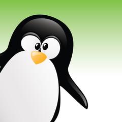 Peephole Penguin Portrait