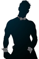 Vector chippendale