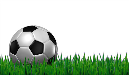 football on grass with white background