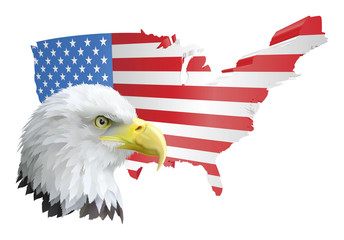 patriotic american eagle and flag