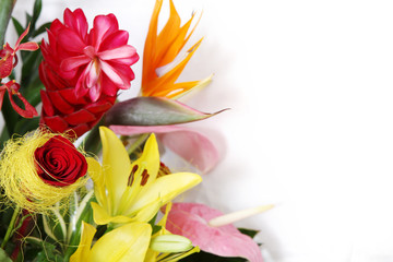 Colorful flowers and room for a text.
