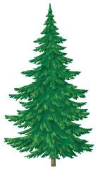 Christmas green tree