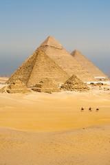 Camels Line Walk Pyramids All Vertical