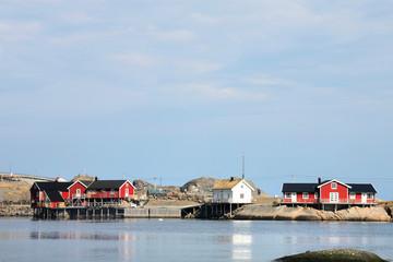 Houses of Hamnøy's fjord