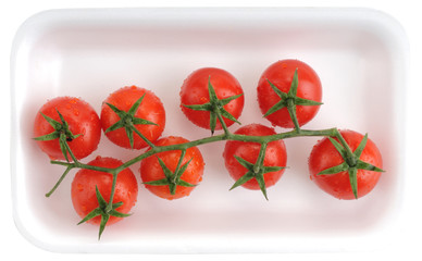 Supermarket packed fresh wet tomatoes on white.