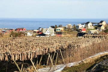 Stockfish and Å village