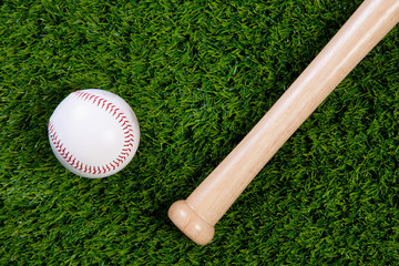 Baseball and bat on grass