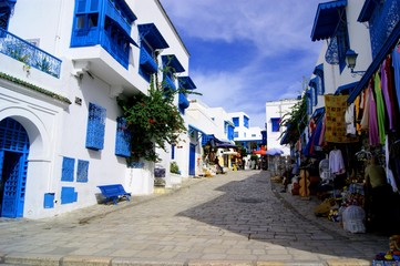 Photo sur Toile Tunisie Sidi Bou Said